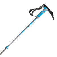 Black Diamond Whippet Self Arrest Ski Pole Review