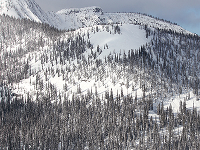 Kootenay-Pass-Backcountry-Skiing_The-Muffin-North-Shoulder