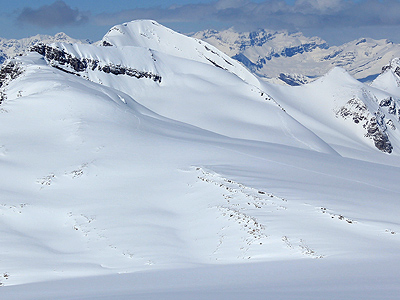 Peyto Hut Backcountry Skiing Routes