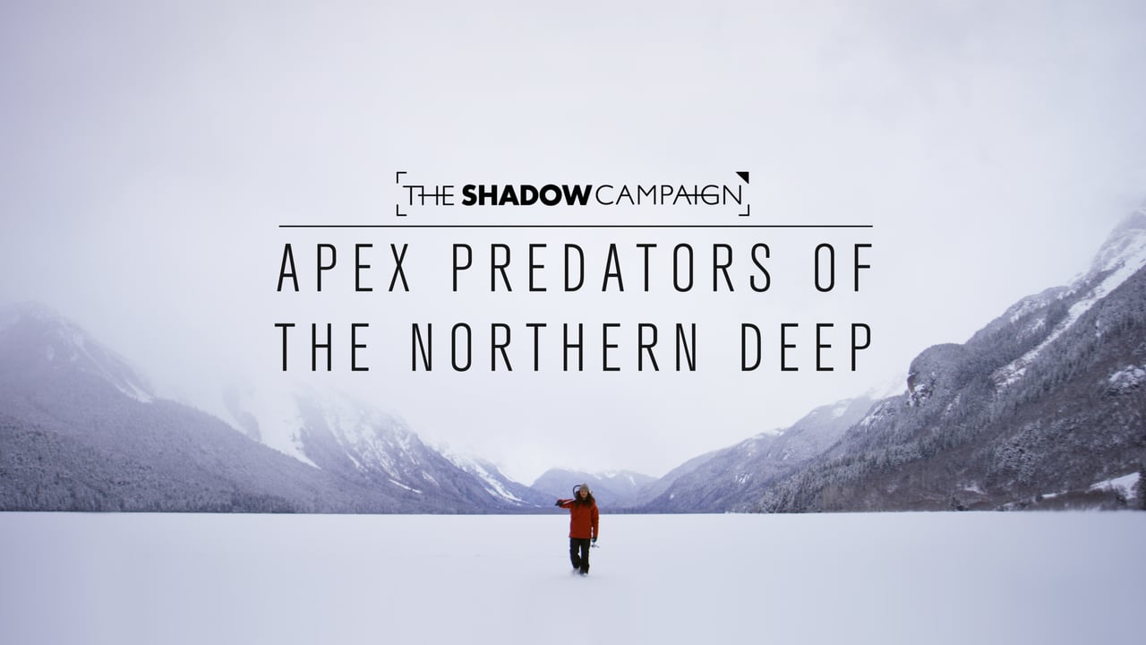 The Shadow Campaign // Apex Predators of the Northern Deep